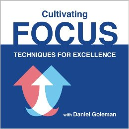 Cultivating Focus: Techniques for Excellence, Audio CD Daniel Goleman