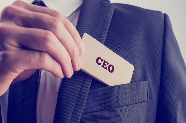 CEO'nun Görevi Nedir? - Temel Aksoy Blog